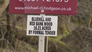Bluehill and Red Bank Wood is one of the areas available.