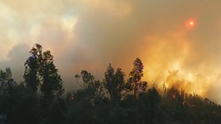 Chile forest fire