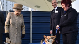 Corgi catches Queen's eye at Battersea Dogs Home