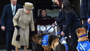 The Queen was given a canine 'guard of honour' on her arrival
