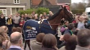 Two-time Gold Cup winner Kauto Star
