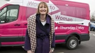 Harriet Harman and Labour's pink