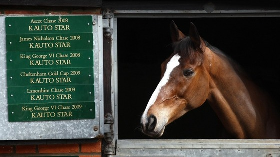 Kauto Star in his stable at Manor Farm, Ditcheat, Somerset.