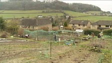 The allotment holders have been told to be gone by next year