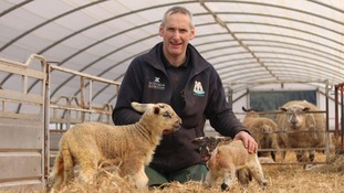 Farmer Dougie Runciman with the mega lamb and another born at the same time.