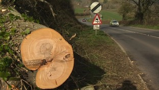 In pictures: Windy weather batters the West Country