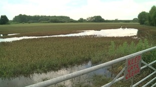 Farm land swamped with water