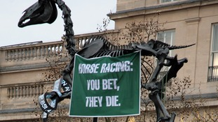 Grand National 'You bet, they die' protest at Trafalgar Square's fourth plinth