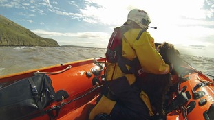 RNLI rescue stranded dog which fell over cliffs