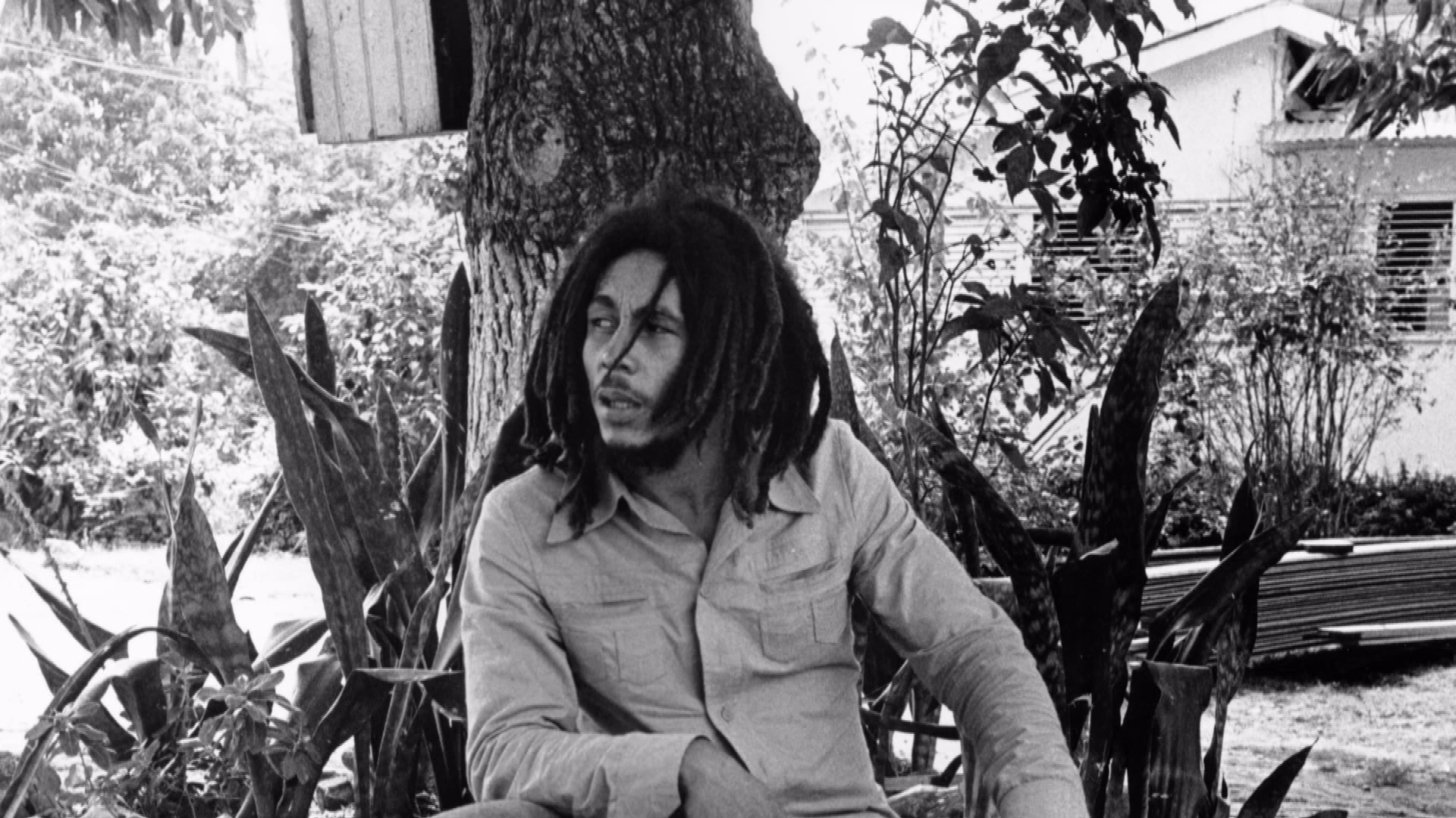 The Life and Career of Bob Marley