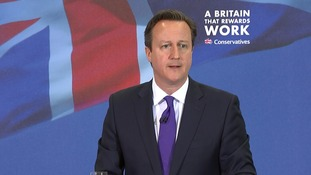 Cameron backs Shapps over Wikipedia claims