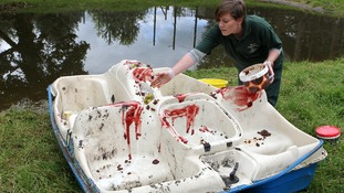 Animal Keeper Nicola McCleery covers a pedalo in jam and grapes