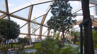 Under the glass dome at the Crossrail garden