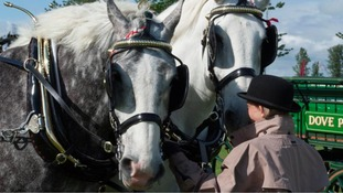 40,000 expected at Nottinghamshire County Show