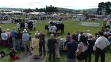Crowds gathered at showground