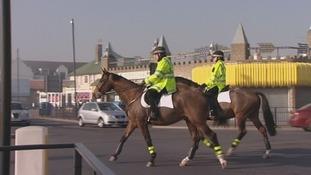 Essex, horses, mounted