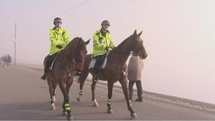 Essex, horses, police