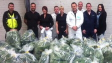 Officers with the confiscated cannabis plants