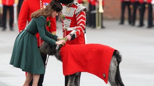 The 1st Battalion Irish Guards are a Foot Guards regiment of the British army