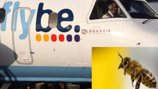 The Flybe flight was cut short by the buzzing intruder.