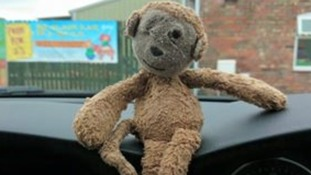 The toy monkey called Boo was lost somewhere in St Ives