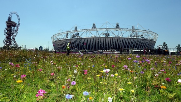 Flowers being watered at the Olympic Stadium