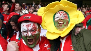 Welsh fans celebrating