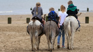 Kids ride donkeys on a Kent beach