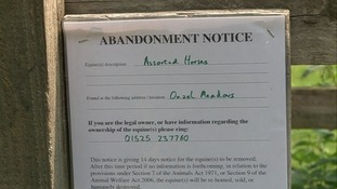 Abandonment notice