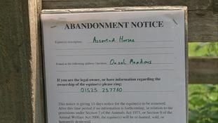 Abandonment notice