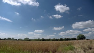 fields, blue sky and cirrus cloud