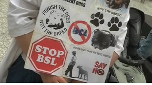 Protest in Nottingham against Dangerous Dog Act