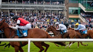 Northumberland Plate in 2014.