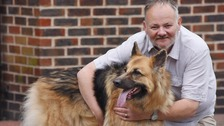 Rescue dog Looby Loo returned the favour when she saved Toby Snow's life