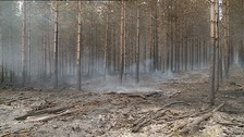 The fire is still burning in Thetford Forest.