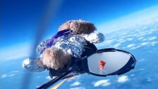 The teddy bear who went into space