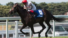 Golden Horn ridden by Frankie Dettori leads the field home to win The Coral-Eclipse Race at Sandown