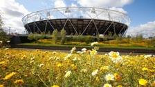 Olympics Stadium