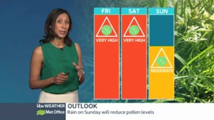 Central Pollen: levels high but falling