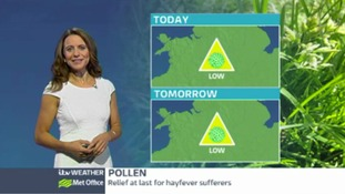 Central Pollen: levels falling