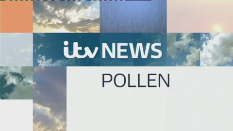 WEATHER_POLLEN_LUNCH_230715