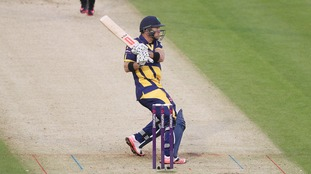 Colin Ingram in action
