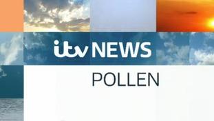 Wednesday Evening's Pollen Forecast