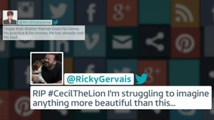 Celebrities including Ricky Gervais and Sharon Osborne have taken to social media to speak out on the killing of Cecil the lion
