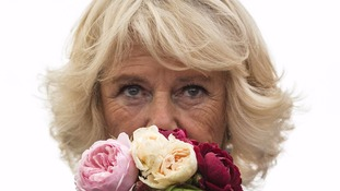 The Duchess of Cornwall sniffs roses as she and the Prince of Wales toured the annual Sandringham Flower Show in Norfolk.