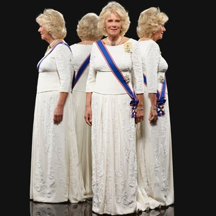 Camilla was photographed wearing formal attire designed by Bruce Oldfield.