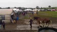 A rainy Wigtown Show in 2012.