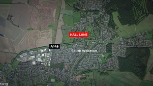 The man in his 80s was hit by a lorry in South Wootton.