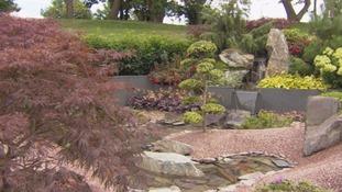 pic of garden