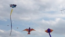 Kites on Durdham Downs